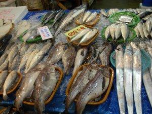 Fisheees