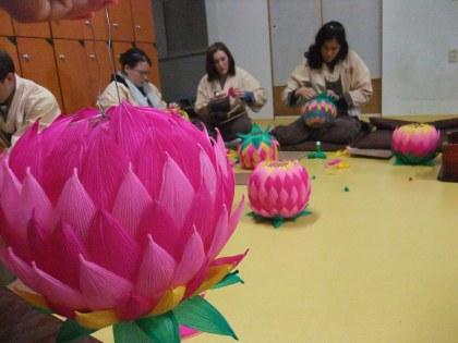 Lotus Lanterns
